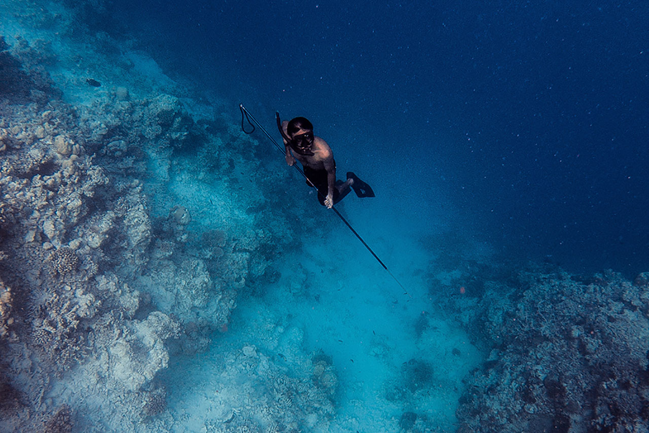 Harpoon and Spearfishing by Wood and Brook